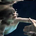 CM「HONDA アコード ハイブリッド」の曲「Feeling Good / Michael Buble(マイケル・ブーブレ)」