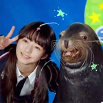 CM「エプソン品川アクアスタジアム 水族館」の曲「My ダーリン / 7!!(セブンウップス)」