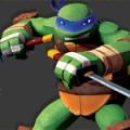 turtles-ulfuls